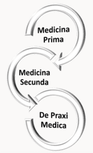 Relationship of the parts in Baglivi's theory of medicine